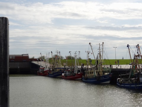 Nordsee5
