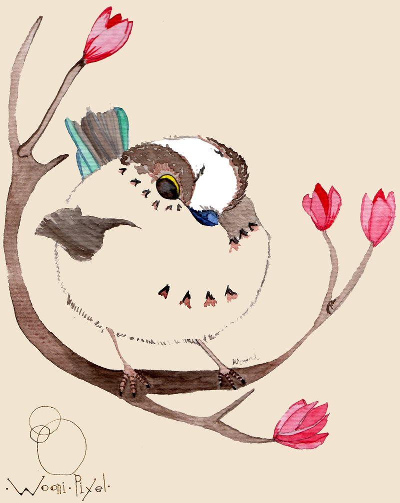 Chubbybird037
